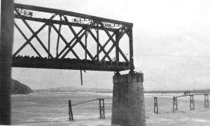 freedombridge